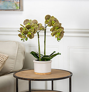 18-Inch Tall Real Touch Ultra-Realistic Green Phalaenopsis Arrangement in Pot, , rollover