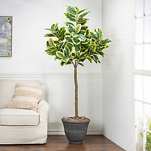 6-Foot Tall Real Touch Ultra-Realistic Varrigated Rubber Plant in Plastic Pot with Faux Dirt, , rollover