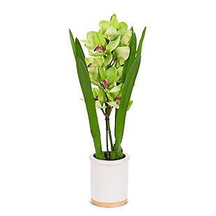 26-Inch Tall Real Touch Ultra-Realistic Green Cymbidium Orchid Arrangement in Pot, , large