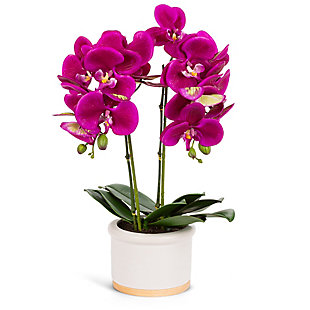 18-Inch Tall Real Touch Ultra-Realistic 2-Stem Purple Phalaenopsis Arrangement in Pot, , large