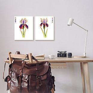 Stupell Industries  Orange Purple Iris Flower with Color Key, 24 x 30, Canvas Wall Art, Purple, rollover