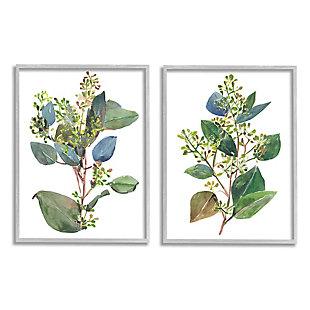 Stupell Industries  Soft Eucalyptus Plant Blue Green Ombre Leaves, 16 x 20, Framed Wall Art, White, large