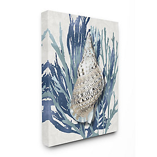 Stupell Industries  Shell Coral Blue Beach Design, 36 x 48, Canvas Wall Art, Blue, large