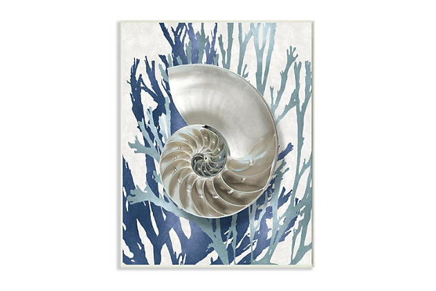 Stupell Industries  Shell Coral Beach Blue Design, 13 x 19, Wood Wall Art, Blue, large