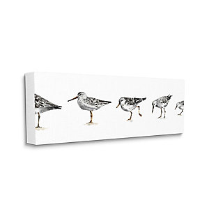 Stupell Industries  Sandpiper Bird Stances Minimal Grey White Painting, 20 x 48, Canvas Wall Art, Gray, large