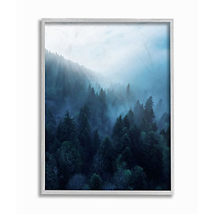 Stupell Industries  Daylight over Pine Forest Mountain with Fog, 16 x 20, Framed Wall Art, Blue, large