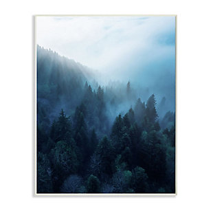 Stupell Industries  Daylight over Pine Forest Mountain with Fog, 13 x 19, Wood Wall Art, Blue, large