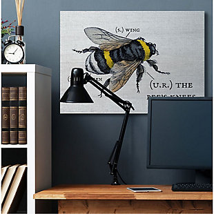 Stupell Industries  Anatomy of Honey Bee Pun Charming Bee's Knees, 36 x 48, Canvas Wall Art, Off White, rollover