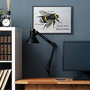 Stupell Industries  Anatomy of Honey Bee Pun Charming Bee's Knees, 24 x 30, Framed Wall Art, Off White, rollover