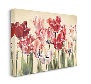 Stupell Industries  Red and White Blooming Florals Charming Tulips, 36 x 48, Canvas Wall Art, Yellow, large