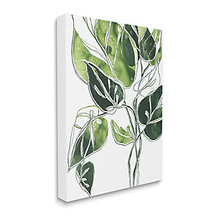 Stupell Industries  Intricate Palm Vines Unique Green Leaves, 36 x 48, Canvas Wall Art, Green, large