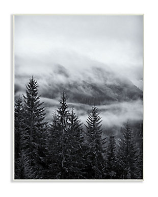 Stupell Industries Snowy Mountain Pine Photograph,10 X 15,  Wood Wall Art, , large