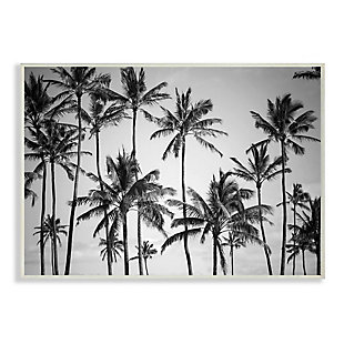 Stupell Industries  Palm Trees Skyline Black and White Photography,12 x 18,  Wood Wall Art, , large