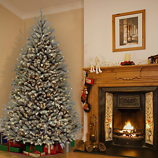 7.5 ft. Dunhill Blue Fir Tree with Clear Lights, , rollover
