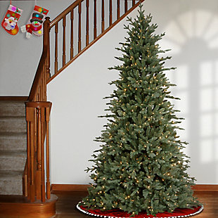 7.5 ft. Buckingham Blue Spruce Tree with Clear Lights, , rollover