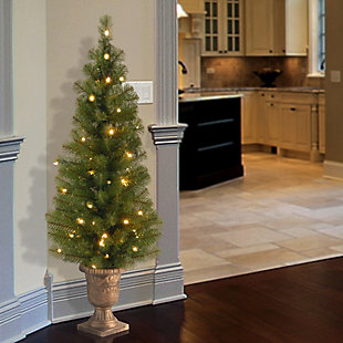 4 ft. Montclair Spruce Entrance Tree with Clear Lights, , rollover