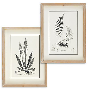 The Gerson Company Set of Two 15.75in H Black and White Fern Art in Wooden Frames, , rollover