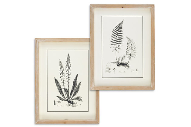 The Gerson Company Set of Two 15.75in H Black and White Fern Art in Wooden Frames, , large
