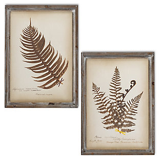 The Gerson Company Set Of 2 22-in H Antique Fern Art In Wooden Frame, , large