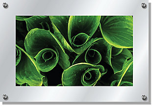 Heavy Effects  Green Leaf Twist Wall Decor White Etched Frosted Frame, Green, large