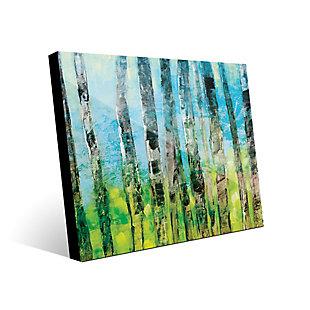 Creative Gallery 24x36 Acrylic Wall Art Print, Multi, large