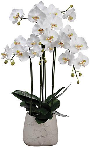 "35"" Phalaenopsis Orchid Arrangement, , large"