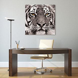 Empire Art Direct Eye of the Tiger Frameless Free Floating Tempered Glass Panel Graphic Wall Art, , rollover