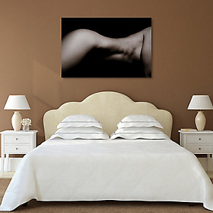 Empire Art Direct Queen Frameless Free Floating Tempered Glass Panel Graphic Wall Art, , rollover