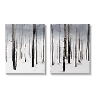 Stupell Winter Snow Tree Forest Haze Eerie Cold 24 x 30 Canvas Wall Art (Set of 2), Gray, large