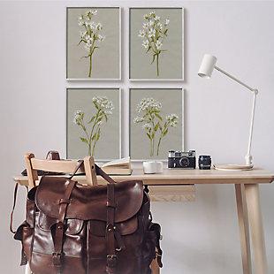 Stupell Vintage White Wild Flower Study Soft Petals 16 X 20 Framed Wall Art (set Of 4), Brown, rollover