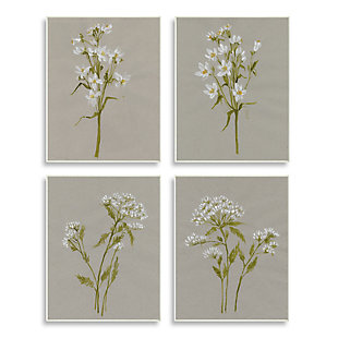 Stupell Vintage White Wild Flower Study Soft Petals 13 x 19 Wood Wall Art (Set of 4), Brown, large