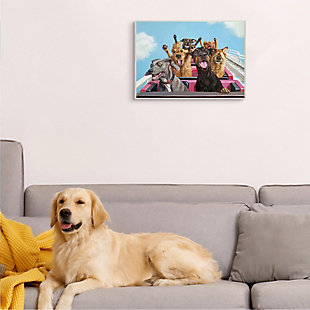 Stupell Dogs Riding Roller Coaster Funny Amusement Park 13 x 19 Wood Wall Art, Blue, rollover