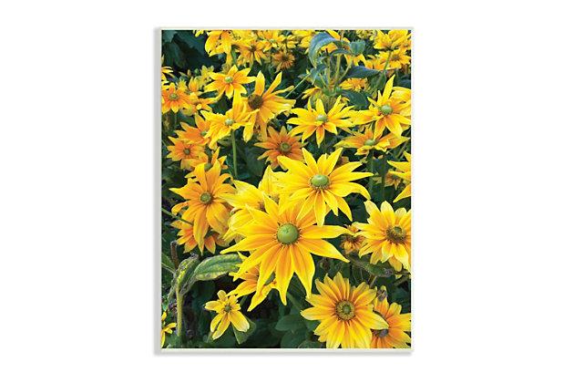 Stupell Sunflower Field Blooming Green Bulbs Yellow Petals 13 x 19 Wood Wall Art, Yellow, large