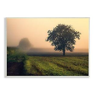 Stupell Misty Morning Sunrise Countryside Tree Field 13 x 19 Wood Wall Art, Green, large