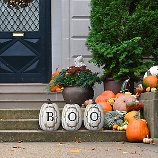 """13"""" BOO Pumpkin Assortment (Set of 3), , rollover"""