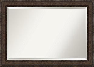 Amanti Art Framed Wall Mounted Mirror, Bronze, large