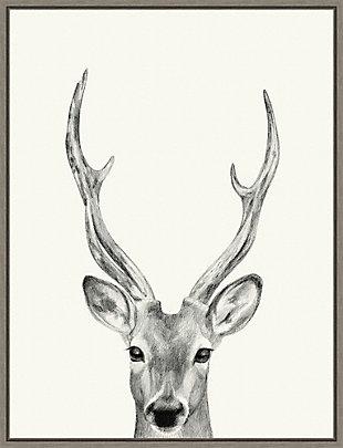 Amanti Art Animal Mug IV (Deer) Framed Canvas Art, , large