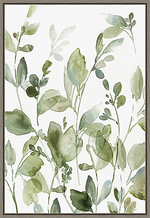 Amanti Art Greetings to the Morning II (Floral) Framed Canvas Art, , large