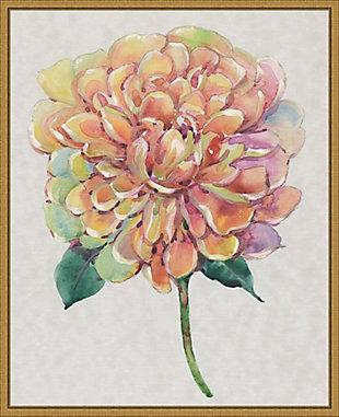 Amanti Art Multicolor Floral Peony I Framed Canvas Art, , large