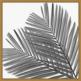 Amanti Art Palm Black and White I Framed Canvas Art, , large