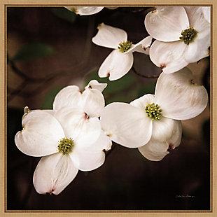 Amanti Art White Dogwood Flowers III Framed Canvas Art, , large