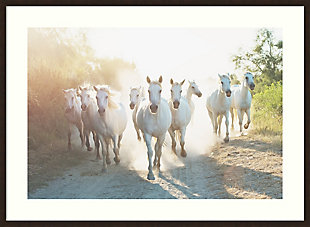 Amanti Art Camargue Horses XIII by Laura Evans Framed Art Print, , large