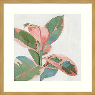 Amanti Art Pink Ficus I by Asia Jensen Framed Art Print, , large