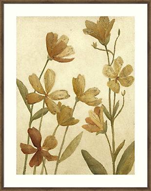 Amanti Art Small Wildflower Field II by Megan Meagher Framed Art Print, , large