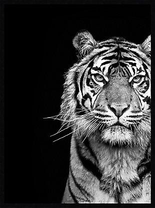 Amanti Art Tiger Animal Portrait Black  Framed Wall Art Print, , large