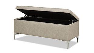 Jennifer Taylor Home Madelyn Storage Bench, Dove Gray, large