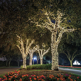Arena Warm Light Fairy Lights, , rollover