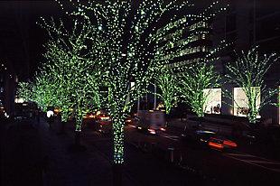 Arena Green Light Fairy Lights, , rollover