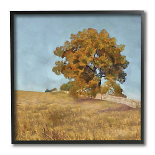 Stupell Industries Autumn Tree on Grassy Hill Country Landscape, 12 x 12, Framed Wall Art, , large