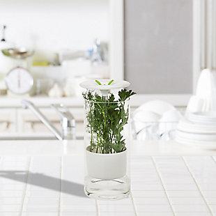 Honey-Can-Do Glass Herb Preserver, , rollover